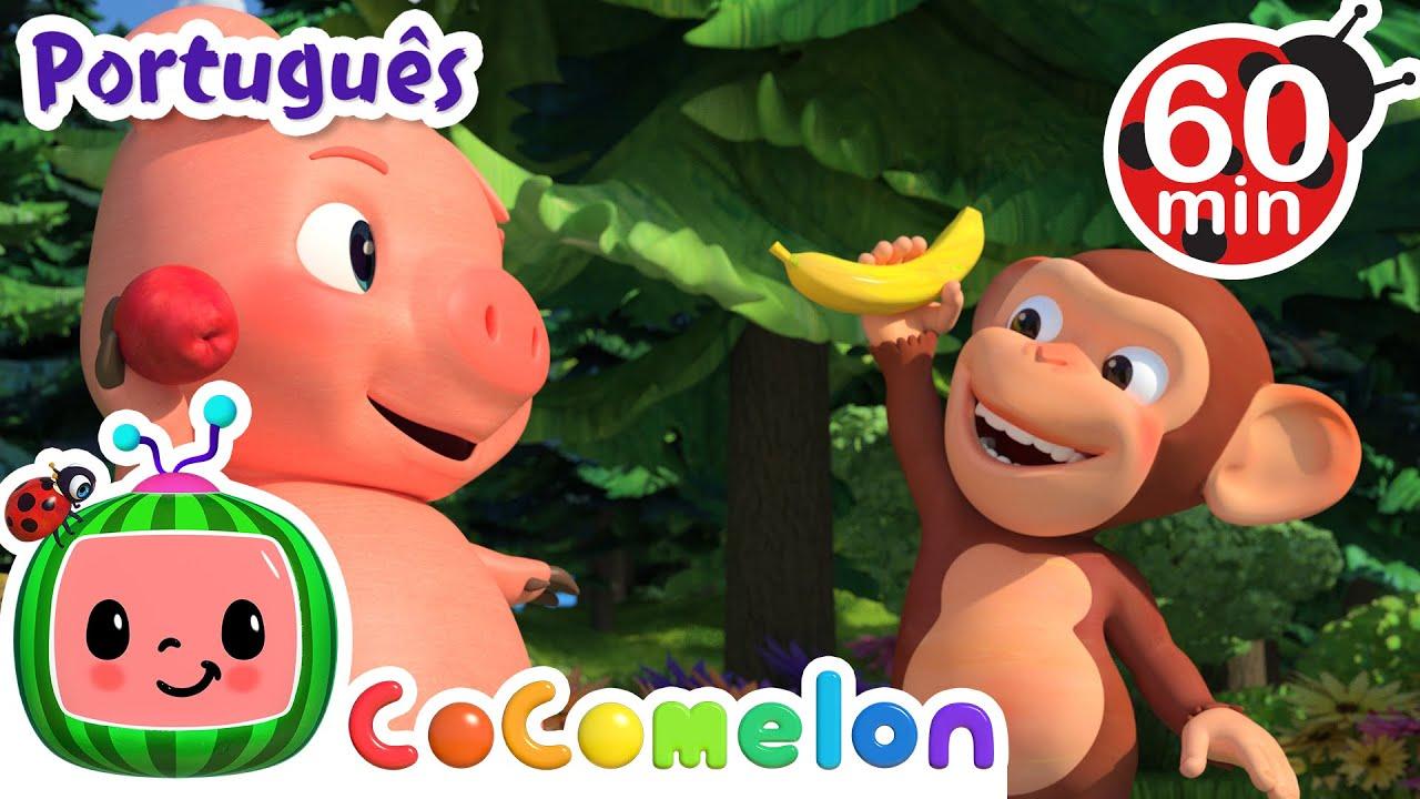 Download CoComelon em Português   Maçãs e bananas   Compilação de Desenhos Animados