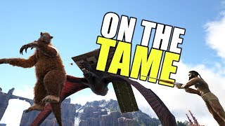 Getting Ready For Breeding! | ARK Official PVP Tribe Life Series | ARK: Survival Evolved | EP 39