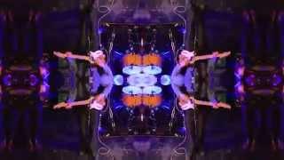 Rhythmic Revolutionaries - The Hot Sprockets