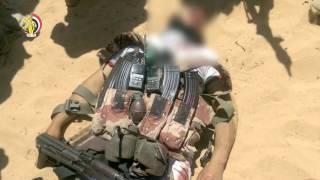 فيديو.. الجيش يصفي 14 إرهابيًا ويضبط 12 آخرين في الشيخ زويد