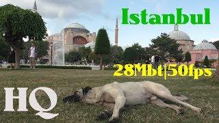 стамбул . Новый аэропорт, Лалели, СултанАхмет, Туркишь Эйрланс и тд