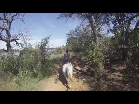 Trail Riding in Dallas TX | Black Mustang Ranch