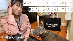 The Luxe Pup: What Fits In Saint Laurent Rive Gauche Tote | What To Bring To Vet To Help Nervous Dog