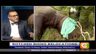 Dead Rhinos: Government says cause of deaths still unknown #CitizenExtra