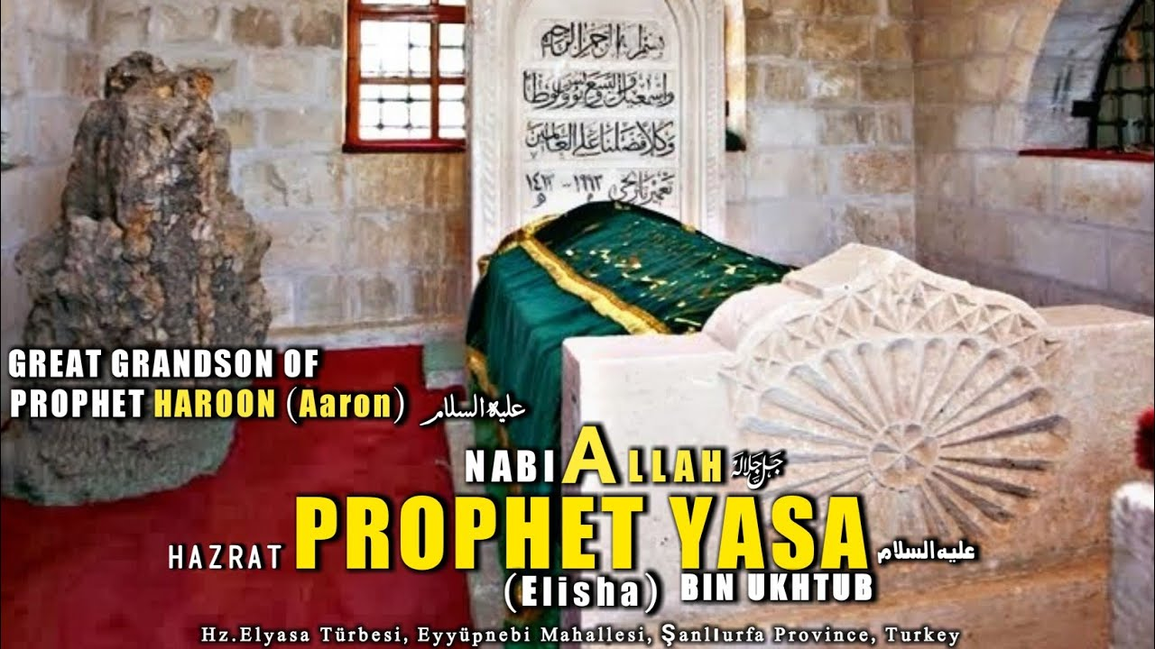 Image result for Prophet Alyasa