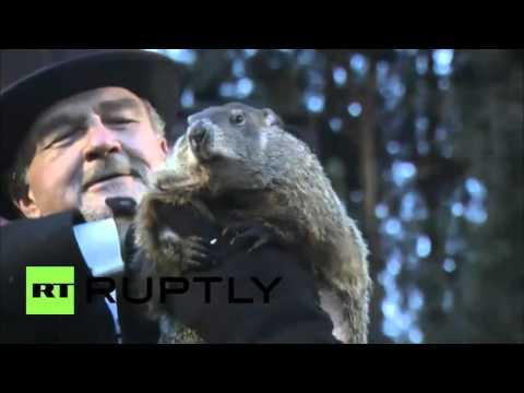 Groundhog Day 2016: Punxsutawney Phil's prediction
