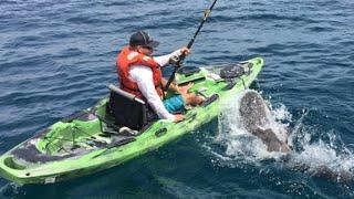 Shark tosses fisherman overboard