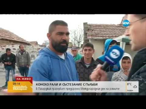 Конско рали и състезание с гълъби в Пазарджик - Пълен абсурд (06.04.2017г.)