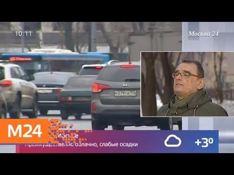 Москвичам пообещали теплую погоду в воскресенье - Москва 24