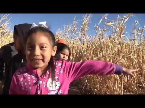 Sutherland Farms- Student Field Trip