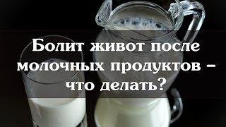Болит живот после молочных продуктов – что делать