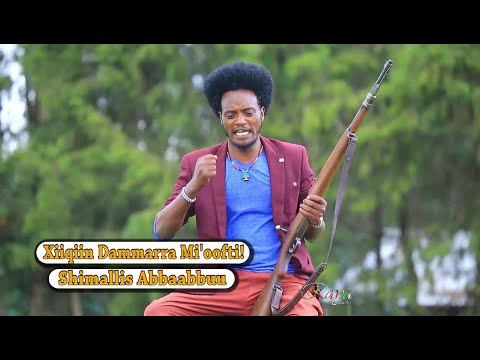 Shimallis Abbaabbuu: Xiiqiin Dammarra Mioofti * Oromo Music 2016 New *  RAYA Studio