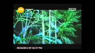 [ANTV] ANGKER BANGET Siluman Sungai Pamali