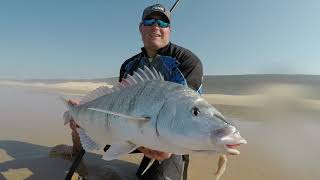 Fishing for the elusive White Steenbras. Sneaky Secret bait reveal.