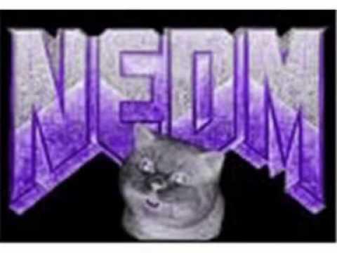 NEDM Song In G Major.wmv