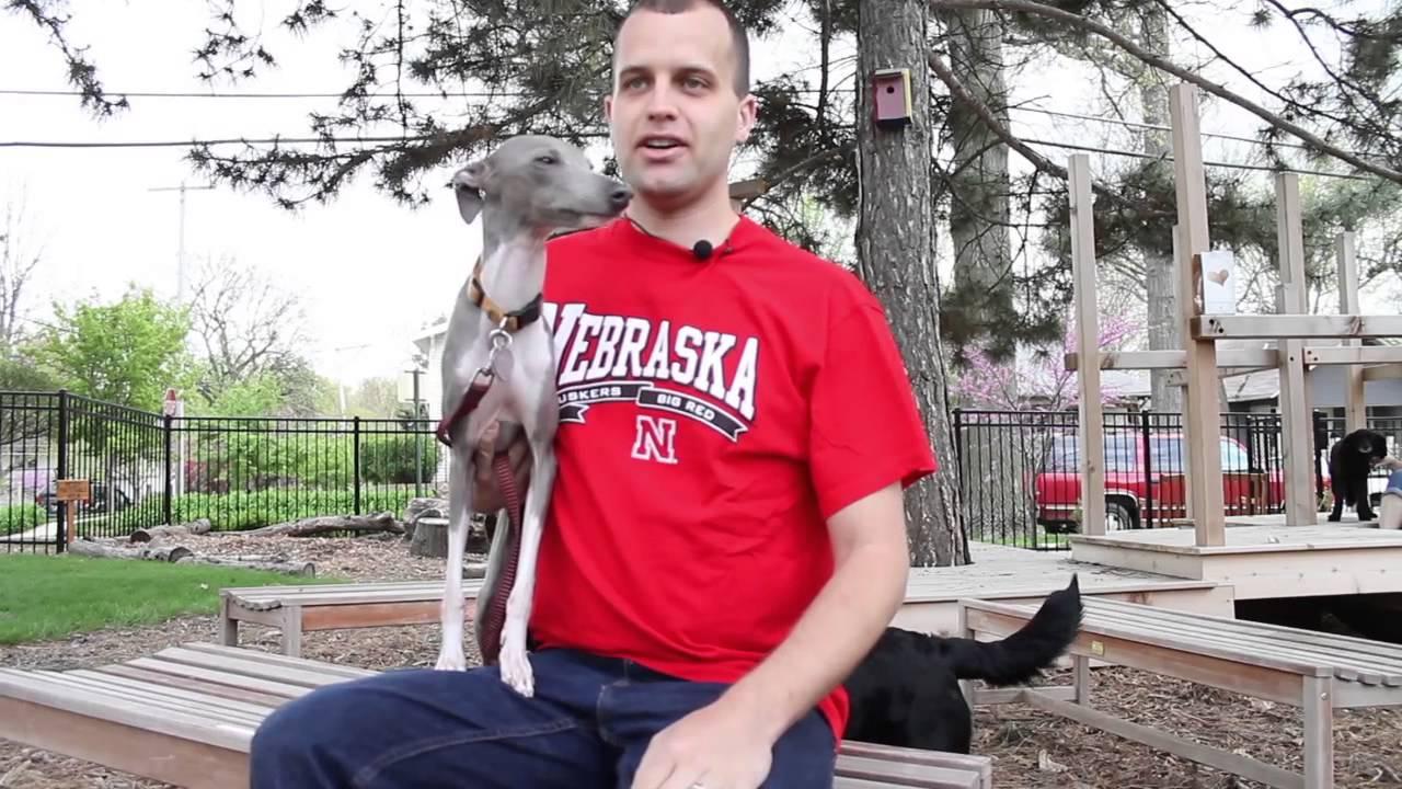 Lincoln Animal Ambassadors - Spay/Neuter Video - YouTube