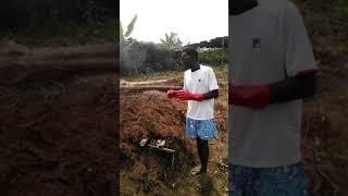 how to make charcoal (youruba)