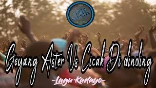 Goyang Aster Vs CicakCicak Di Dinding ¦¦¦ Lagu Kadayo 2018