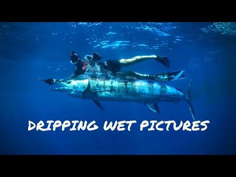 Spearfishing MARLIN & BLUEFIN TUNA - Australia