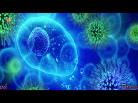 Parasites Remover Binaural Beats ➤ Worms, Flukes & Other ➤ Parasite Cleansing Frequency
