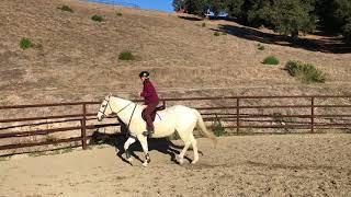 Horseback Lessons & Riding in Carmel Valley