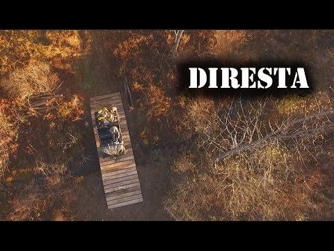✔ DiResta Tiny Bridge Flexvolt