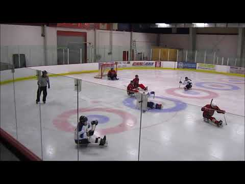 2018 Empire State Winter Games - Sled Hockey Finals