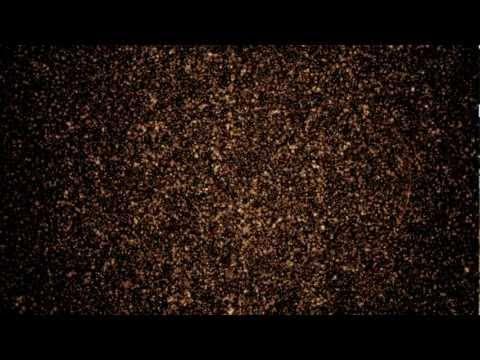AURORA - A Forerunner Of Solar Storms (АВРОРА - Апостол Солнечных Бурь)