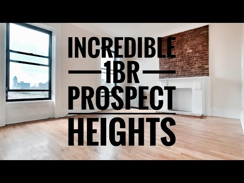Incredible 1 Bedroom Apartment in Prospect Heights near Prospect Park, Brooklyn NY🌳🐱