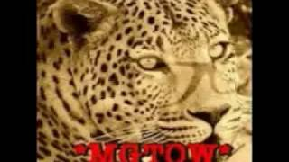 Gambar cover LEO THE WISE MGTOW charity and generosityold virtues for new men