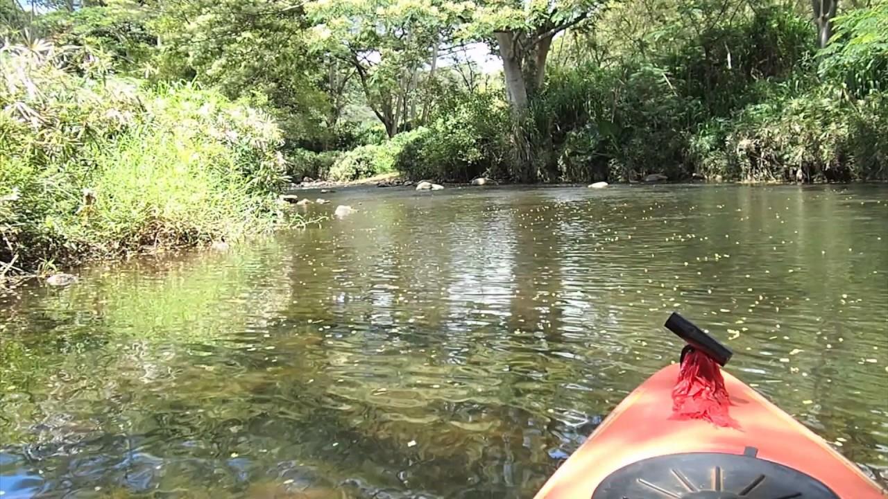 Wailua River Kayak Trip - Kauai, Hawaii - Plus Short Hike To Waterfall
