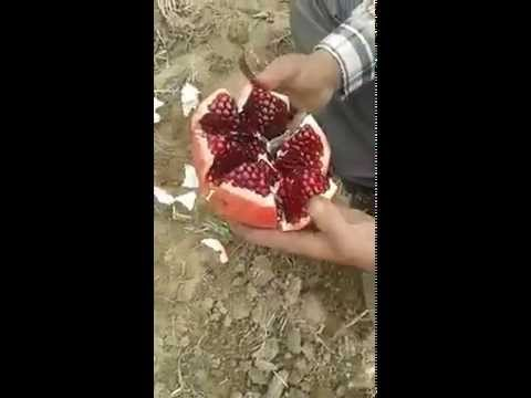 the best way to cut a pomegranate
