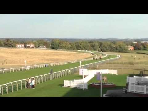 Live wire winning at Beverley Racecourse
