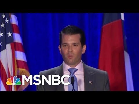 Donald Trump Jr.: 'I Never Spoke To My Father' About Trump Tower Meeting | Velshi & Ruhle | MSNBC