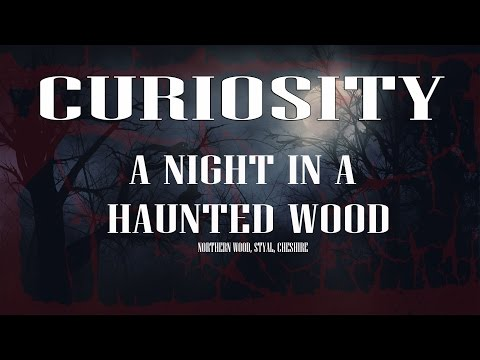 Curiosity - Haunted woods in Cheshire