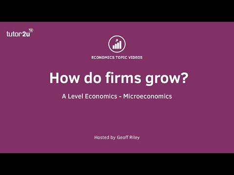 How Do Firms Grow?