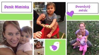 Deník miminka: 12. měsíc