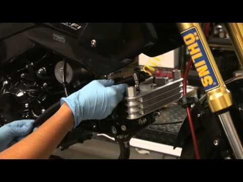 Kitaco Oil Cooler Honda Grom Installation Video Hardracing