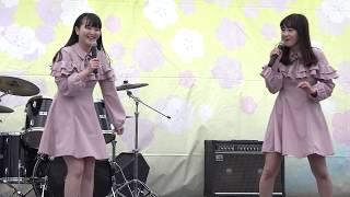 2018年4月8日 鳥取市きなんせ広場にて 13時~14時迄、桜アイドル FES...