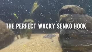 Underwater wacky senko footage