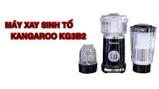 Máy Xay Sinh Tố Kangaroo KG3B2 - Pico.vn