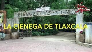 4 lugares que debes visitar en Ayotlán Jalisco.