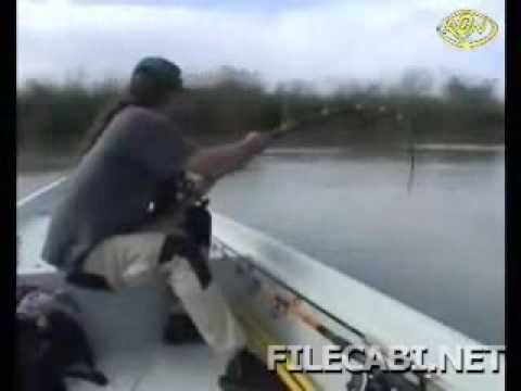 BIGGEST CATFISH I HAVE EVER SEEN CAUGHT - HD by CATFISHING WORLD from YouTube · High Definition · Duration:  3 minutes 8 seconds  · 13,000+ views · uploaded on 2/18/2016 · uploaded by Catfish World by Yuri Grisendi