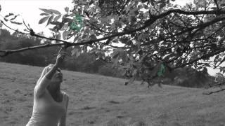 NoMA: Music tree