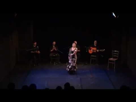 Noche de Flamenco 15  Juli 2012