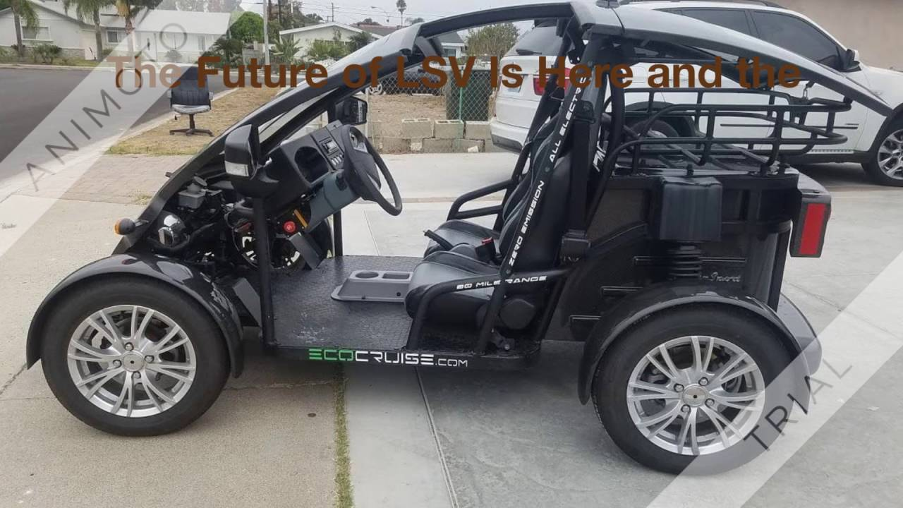 Eco Cruise Electric Golf Cart NEV LSV Vehicle Car California Street Legal  Electric Vehicle