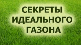 Секреты идеального газона(, 2017-02-05T11:03:50.000Z)