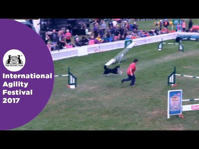 Olympia Semi Final - G3-7 ABC Large - Part 4 | International Agility Festival 2017