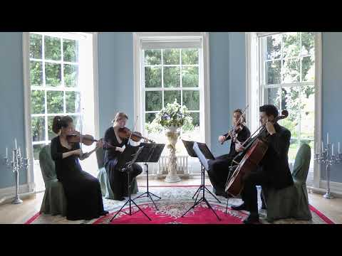 Here There and Everywhere (The Beatles) Wedding String Quartet