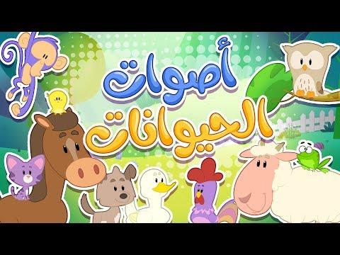 أغنية أصوات الحيوانات   قناة مرح كي جي - Marah KG